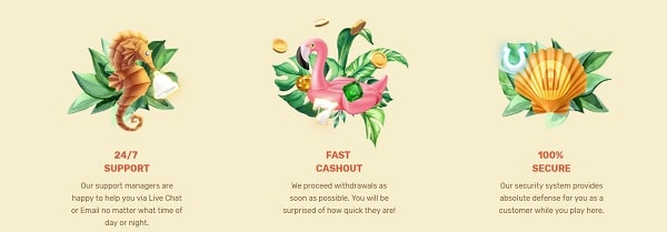 ParadiseCasino.com Deposit & Support